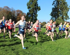 Downeys Nissan Laois Masters Cross Country Championships 2017